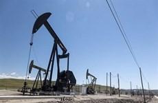 Giá dầu châu Á giảm phiên 31/8 do hoạt động sản xuất yếu ở Trung Quốc