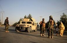 Taliban đưa lực lượng đặc nhiệm tới kiểm soát sân bay Kabul