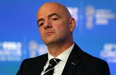 Quyết định về đề xuất tổ chức World Cup hai năm một lần