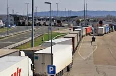 Chính phủ Anh nỗ lực giải quyết tình trạng thiếu tài xế xe tải