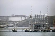 Anh nối dài danh sách các nhà cung cấp năng lượng ngừng giao dịch