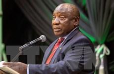 Nam Phi phấn đấu đạt mục tiêu tiêm chủng để phục hồi kinh tế