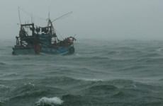 Áp thấp nhiệt đới mạnh lên, di chuyển tàu, thuyền khỏi nơi nguy hiểm