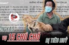[Audio] Xôn xao vụ 15 chú chó của hai vợ chồng ở Cà Mau bị thiêu hủy