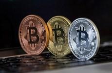 Giá Bitcoin lập kỷ lục mới, vượt mức 65.000 USD