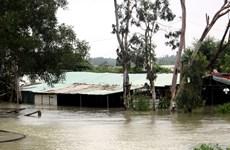 Quảng Ngãi: Mưa trắng trời, hàng nghìn nhà dân bị ngập sâu trong nước
