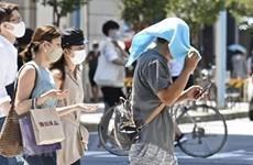 Năm 2020: Châu Á trải qua năm nóng nhất trong lịch sử