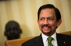 Brunei hoan nghênh các tiến bộ của ASEAN về chống dịch COVID-19