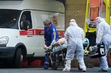 28/10: Thế giới đã ghi nhận tổng cộng hơn 245 triệu ca nhiễm COVID-19