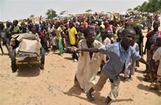 Các đối tác phát triển và ngân hàng hỗ trợ châu Phi chấm dứt nạn đói