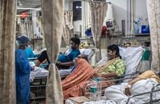 COVID-19: Chuyên gia Mỹ khuyến nghị Ấn Độ áp đặt phong tỏa