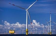 IEA: Sản lượng năng lượng tái tạo đạt mức cao nhất trong 20 năm qua