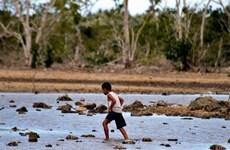 Các thành phố ở châu Á là nơi chịu rủi ro môi trường cao nhất