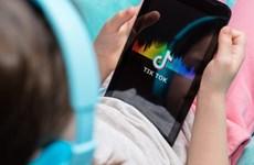 TikTok mở chiến dịch khuyến khích người dùng kiểm chứng thông tin