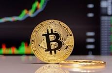 Giới phân tích cảnh báo đồng bitcoin có thể giảm xuống đến 30.000 USD