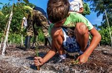 LHQ: Đầu tư cho thiên nhiên cần tăng gấp ba lần vào năm 2030