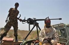 Quân đội quốc gia Somalia tiêu diệt hàng chục phần tử al-Shabaab