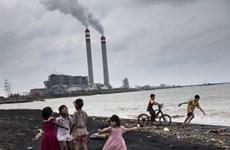 Indonesia cam kết cắt giảm 1,02 tỷ tấn CO2 vào năm 2030