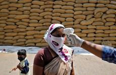 Dịch COVID-19: Số ca nhiễm mới tại Ấn Độ và Brazil tiếp tục giảm