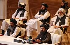 Đại diện Chính phủ Afghanistan và Taliban nối lại hòa đàm tại Doha