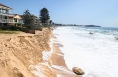 Sóng biển dữ dội hơn đang đe dọa các bờ biển Australia