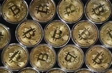 Bitcoin lần đầu giảm xuống mức 30.000 USD sau gần 5 tháng qua