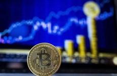 Fitch cảnh báo về quy định triển khai bitcoin của El Salvador