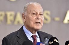 Tổng thư ký Liên đoàn Arab kêu gọi nỗ lực quốc tế nhằm loại bỏ IS