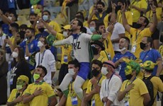 Copa America 2021: Cuộc cách mạng không thành của Tite