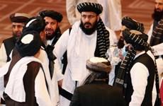 Chính phủ Afghanistan và Taliban cam kết tiếp tục đàm phán