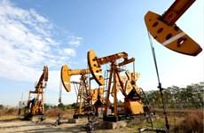 Giá dầu tại thị trường châu Á đi xuống trong phiên 23/7