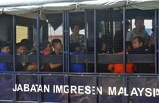 Malaysia phạt nặng tổ chức, cá nhân sử dụng lao động bất hợp pháp