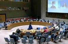 Ấn Độ đảm nhận vị trí Chủ tịch luân phiên Hội đồng Bảo an LHQ