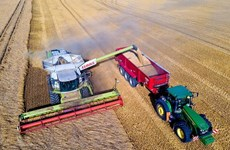 Giá lương thực thế giới giảm tháng thứ 2 liên tiếp