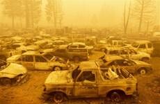 Mỹ: Vụ cháy rừng lớn thứ hai trong lịch sử bang California