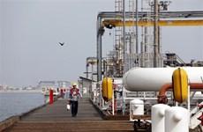 Mỹ hối thúc OPEC+ tăng sản lượng dầu để hỗ trợ đà phục hồi kinh tế