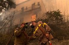 Hy Lạp đã khống chế được các đám cháy rừng trên đảo Evia