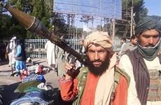 Taliban giành quyền kiểm soát 2 thành phố lớn tại Afghanistan