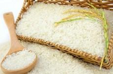 Hơn 10.000 người tiêu dùng Australia sẽ dùng thử gạo Việt Nam