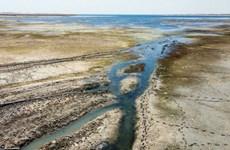 Cảnh báo thảm họa nhân đạo ở Syria do sông Euphrates ngày càng thu hẹp