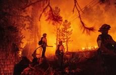 Hàng chục nghìn người sơ tán do cháy rừng ở miền Tây nước Mỹ