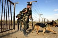 Tổ chức Hiệp ước An ninh tập thể tập trận tại Tajikistan vào tháng 10
