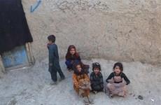 Afghanistan: Taliban cho phép trẻ em gái quay trở lại trường học