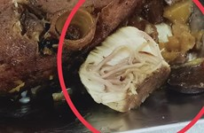 Làm rõ thông tin có ký sinh trùng trong thức ăn ở công ty Ohsung Vina