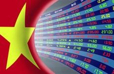 Chứng khoán Việt Nam: Động lực từ nhà đầu tư trong nước