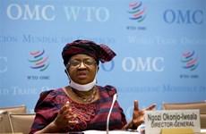 WTO dự kiến sẽ thảo luận với Ấn Độ về sản xuất vaccine