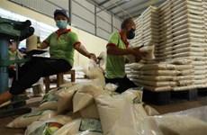 Nhãn hiệu Gạo Việt Nam được bảo hộ tại 22 quốc gia trên thế giới