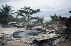HĐBA kêu gọi chấm dứt bạo lực ở khu vực Hồ Lớn châu Phi