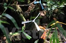 [Photo] Khám phá nghề làm chuồn chuồn tre dưới chân núi Tây Phương