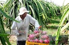 """""""Australia rất mong đợi để nhập khẩu thêm trái cây của Việt Nam"""""""